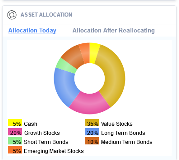 Asset Allocation pie chart in the WealthTrace Financial Planner